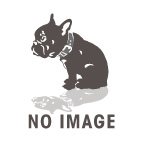 ホビーストック新着!  ぷちます! 10巻 オリジナルアニメDVD付き限定版 新作グッズ情報